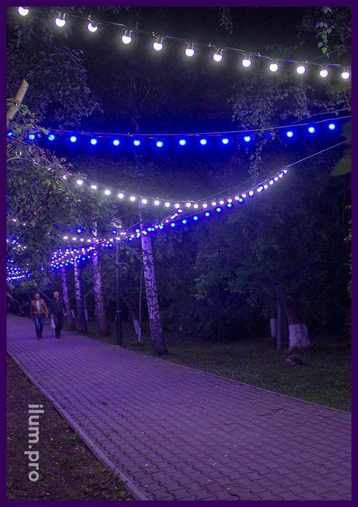 Подсветка парковой дорожки в Пермском крае гирляндами с лампочками