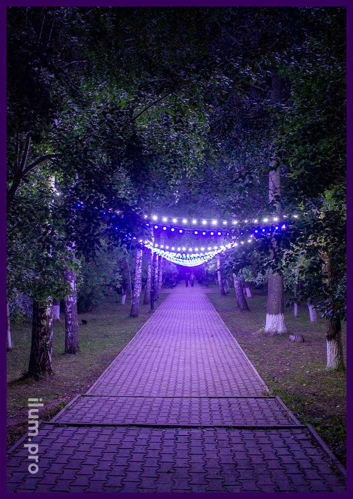 Украшение парка в Орде светодиодным белтлайтом разных цветов