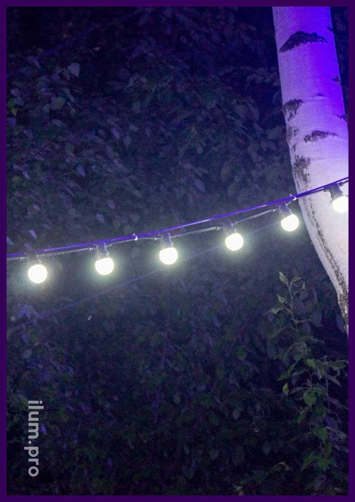 Белтлайт белый с крупными лампочками - гирлянда для подсветки деревьев