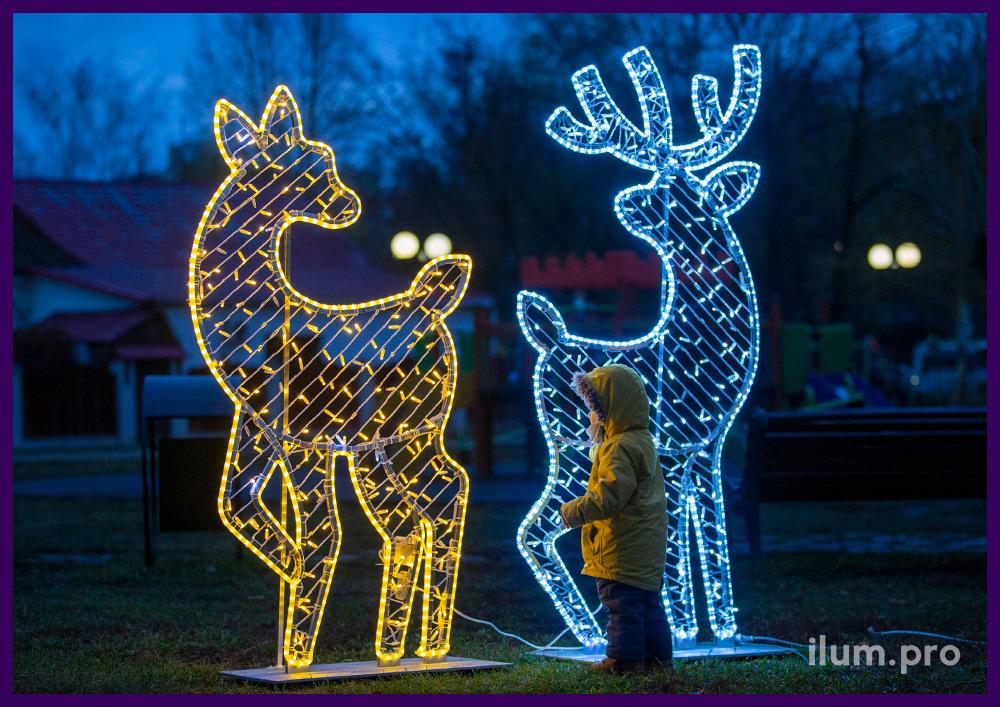 Иллюминация в форме оленей из гирлянд разных цветов в парке