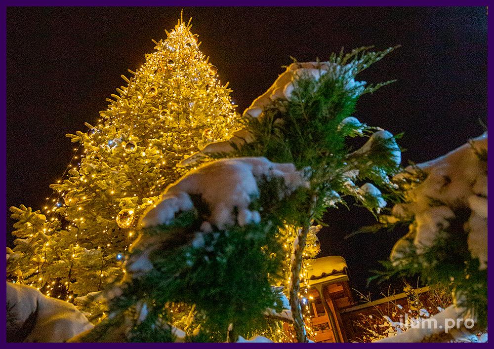 Качественная светодиодная иллюминация с высокой степенью защиты от влаги во дворе дома во Владимирской области