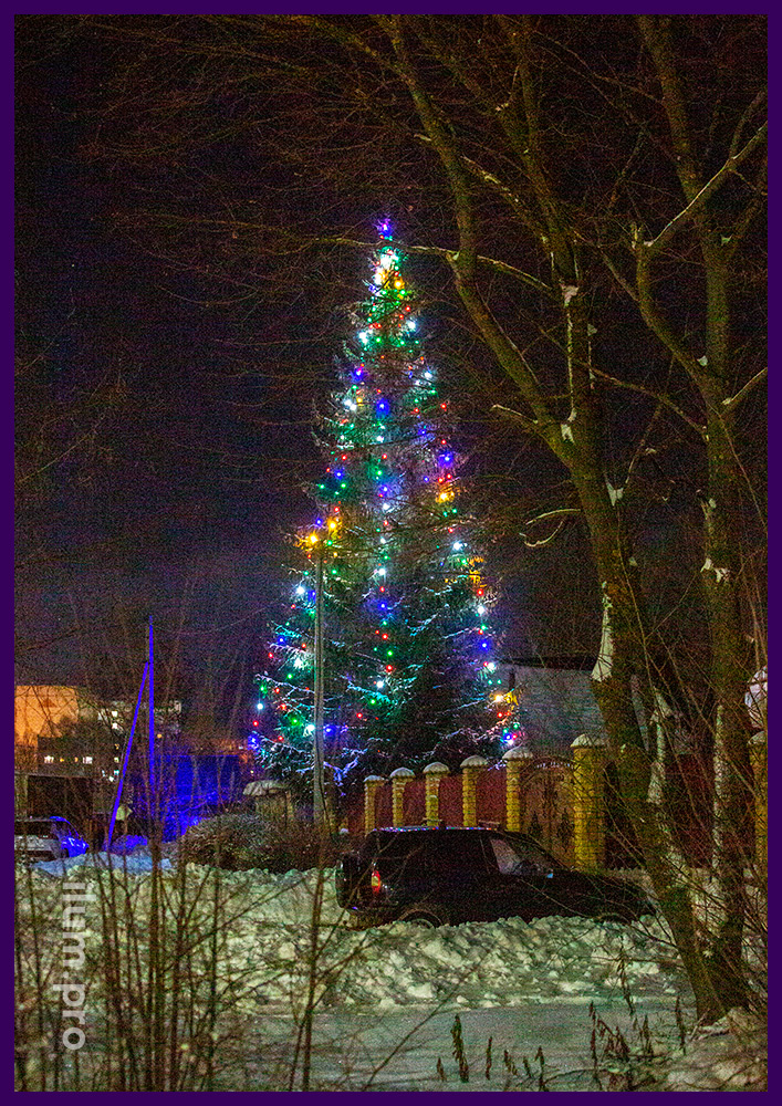Подсветка живой ели новогодними гирляндами разных цветов на толстом резиновом проводе