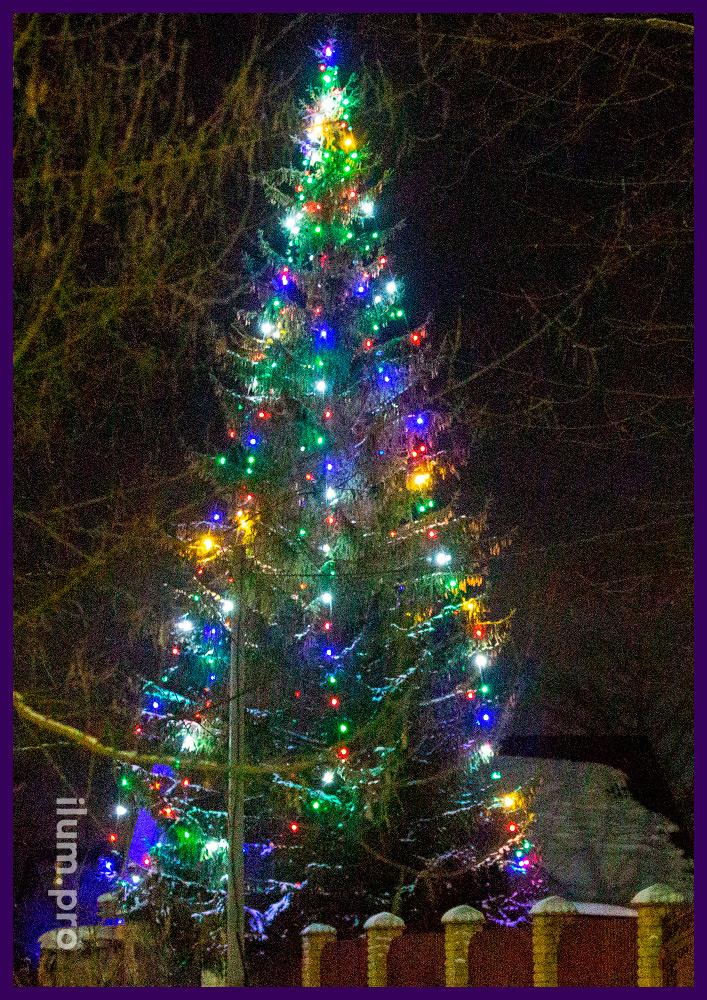 Живая ёлка рядом с домом с подсветкой новогодними гирляндами разных цветов и защитой от воды