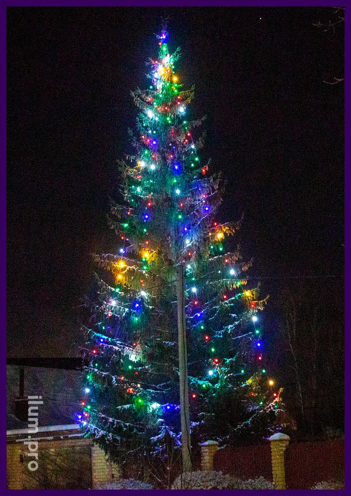 Новогоднее украшение уличной ёлки гирляндами белтлайт на толстом резиновом проводе