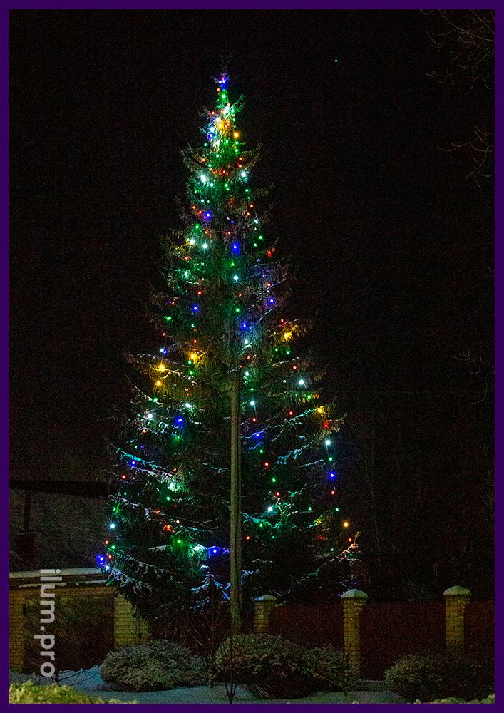 Подсветка ёлки новогодними светодиодными гирляндами с крупными лампочками разных цветов