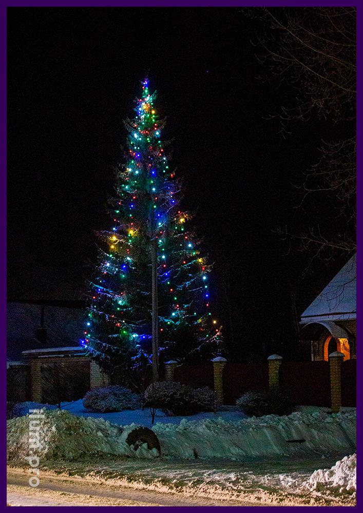 Подсветка уличной ёлки разноцветными гирляндами с защитой от воды и крупными лампочками