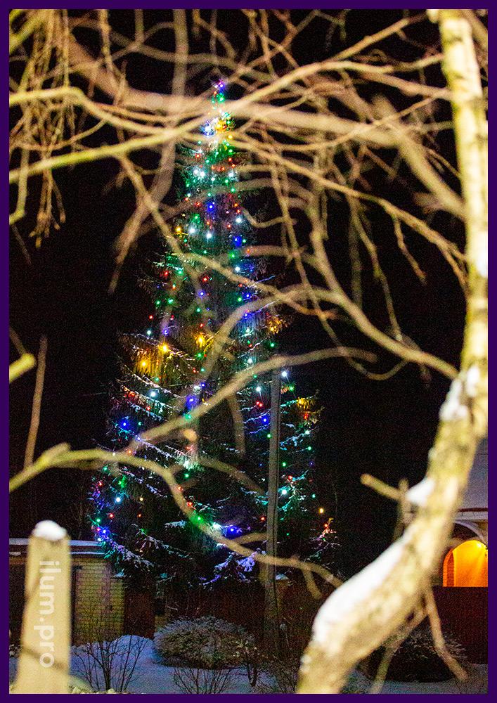Новогодняя иллюминация на высокой ёлке во дворе частного дома с разноцветными светодиодными лампами