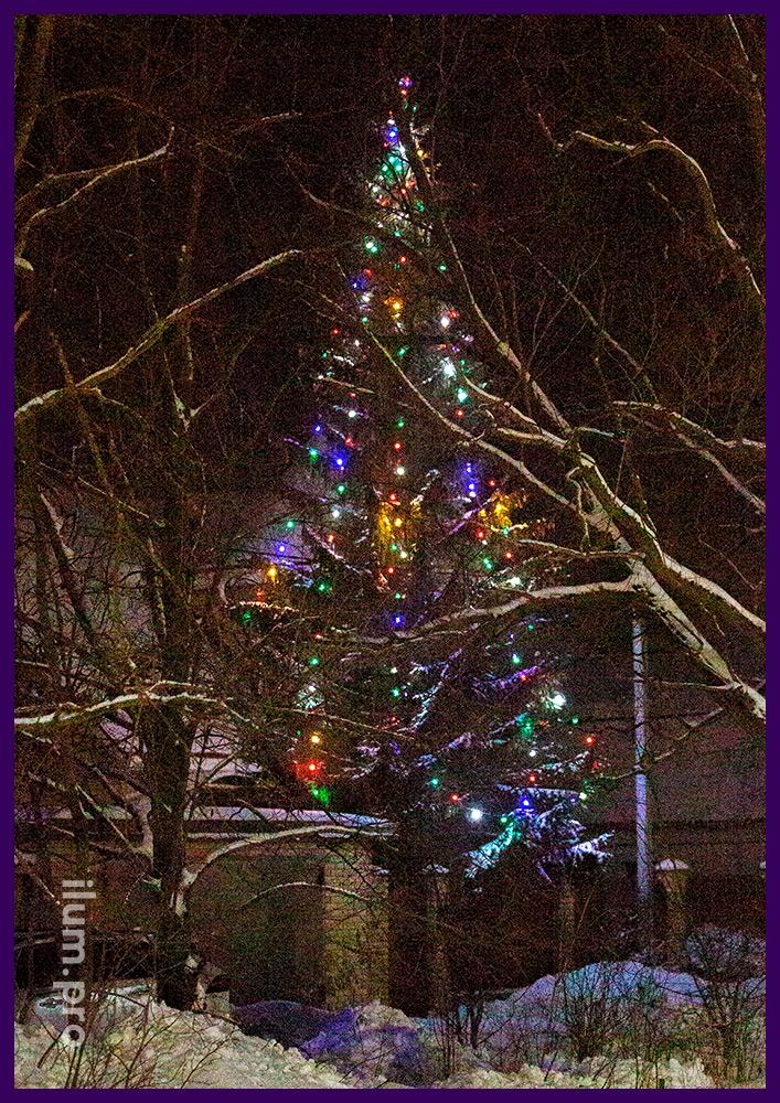 Новогоднее украшение уличной ёлки разноцветными лампочками белтлайт с защитой от влаги и пыли IP65