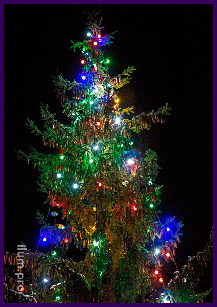 Подсветка новогодняя для уличной ёлки во дворе дома во Владимирской области с разноцветными лампочками