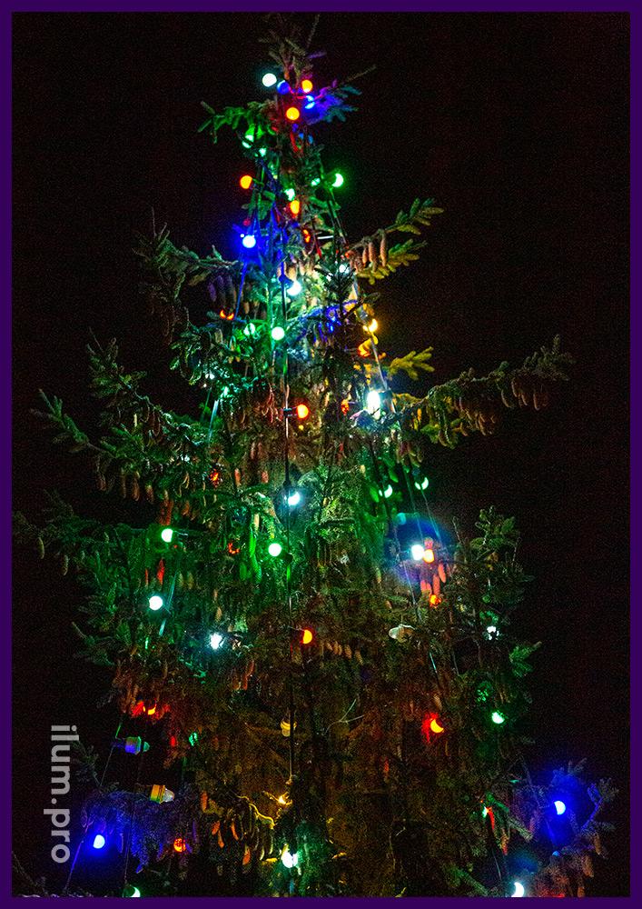 Новогоднее украшение живой ёлки гирляндой белтлайт на толстом резиновом проводе с разноцветными лампами