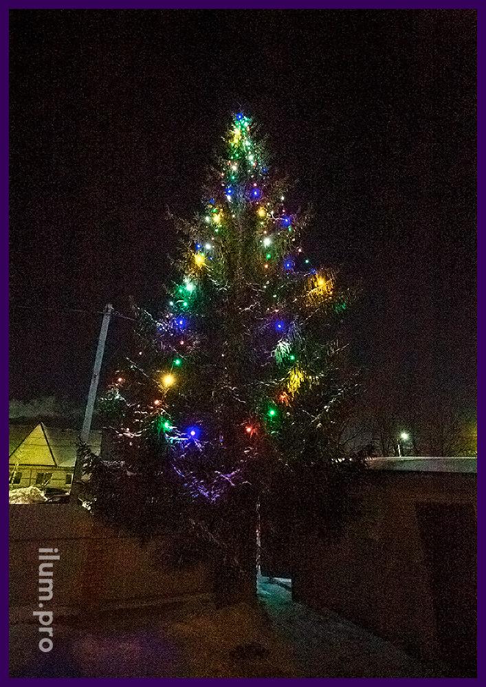 Новогодняя подсветка уличной ёлки во дворе частного дома крупными лампочками белтлайт на резиновом проводе