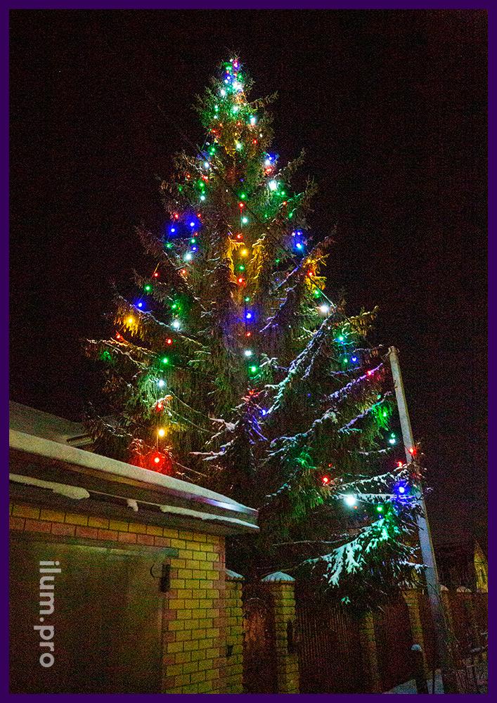 Новогоднее освещение елки белтлайтом разных цветов, гирлянды для улицы с защитой IP65