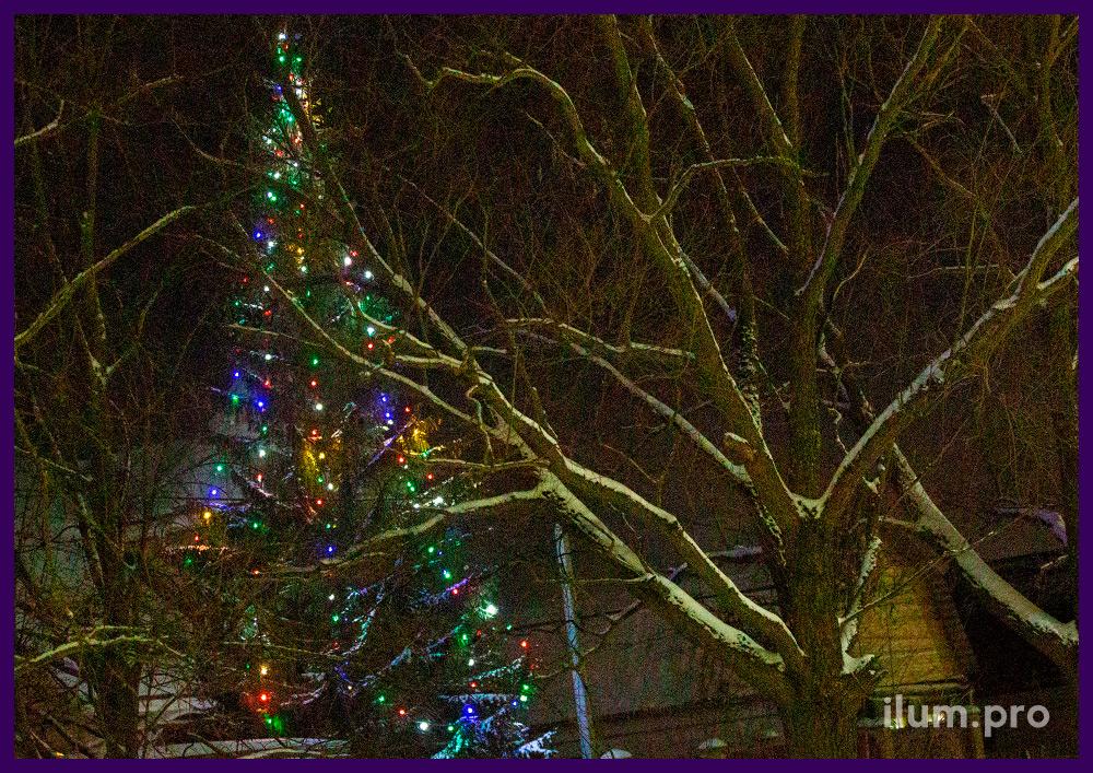 Украшение ёлки во дворе дома во Владимирской области на новогодние праздники гирляндами белтлайт