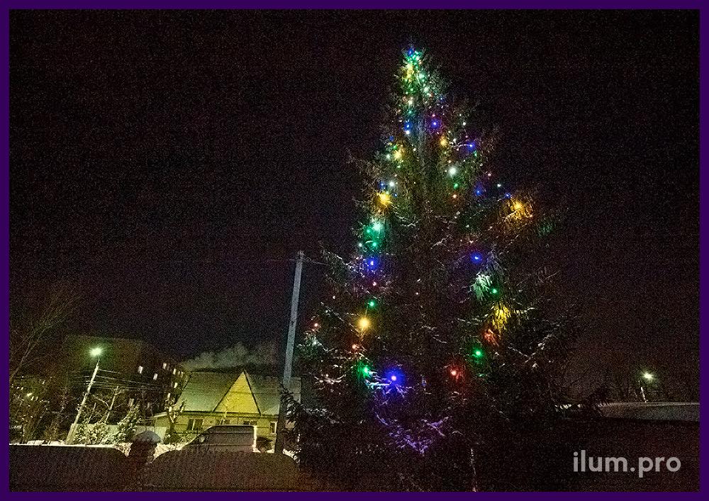 Украшение высокой ели во дворе дома разноцветными гирляндами с крупными лампочками белтлайт