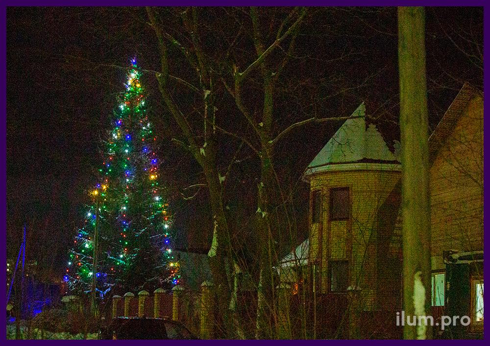 Уличный светодиодный белтлайт на высокой живой ёлке во дворе дома на новогодние праздники