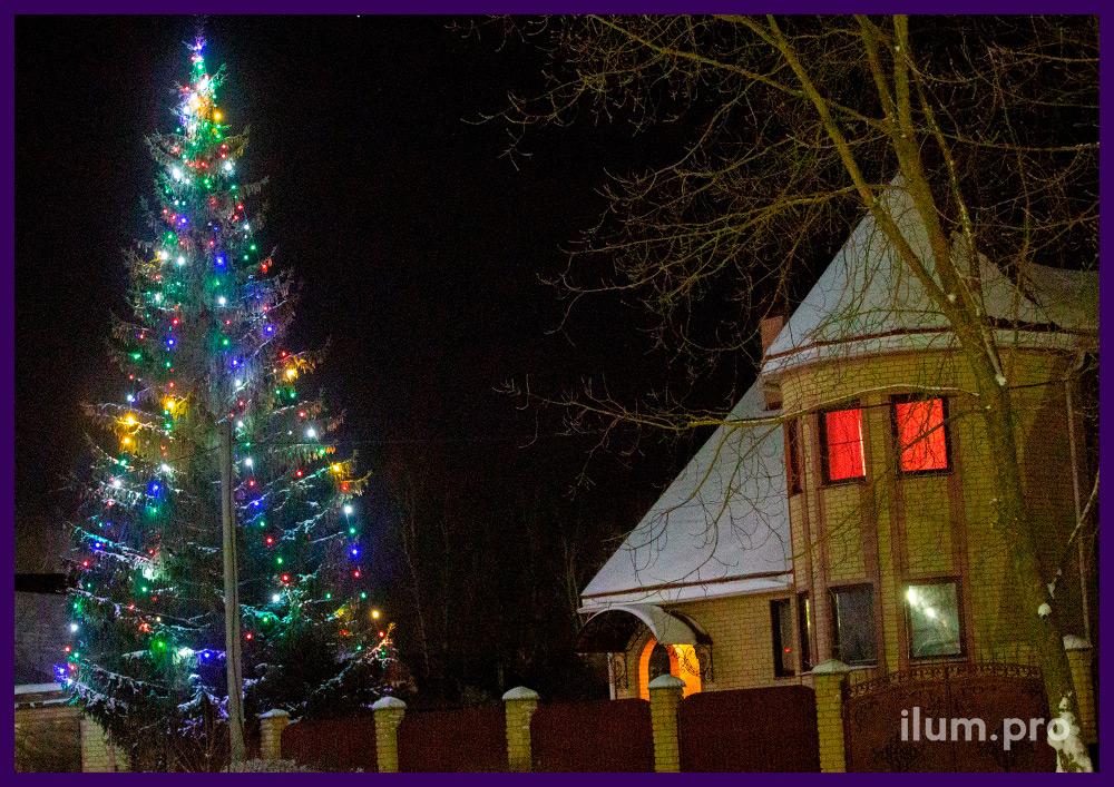 Новогоднее оформление живой ели во дворе дома светодиодными гирляндами белтлайт