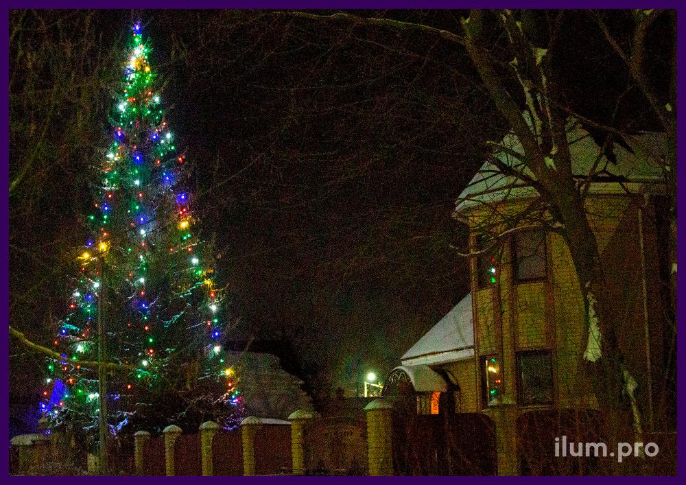 Новогоднее освещение уличной ели разноцветным белтлайтом с крупными лампочками