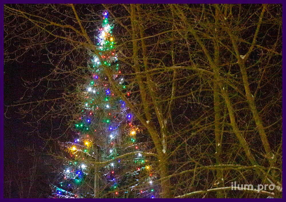 Украшение новогодней ёлки разноцветными лампочками белтлайт с высокой степенью защиты от влаги