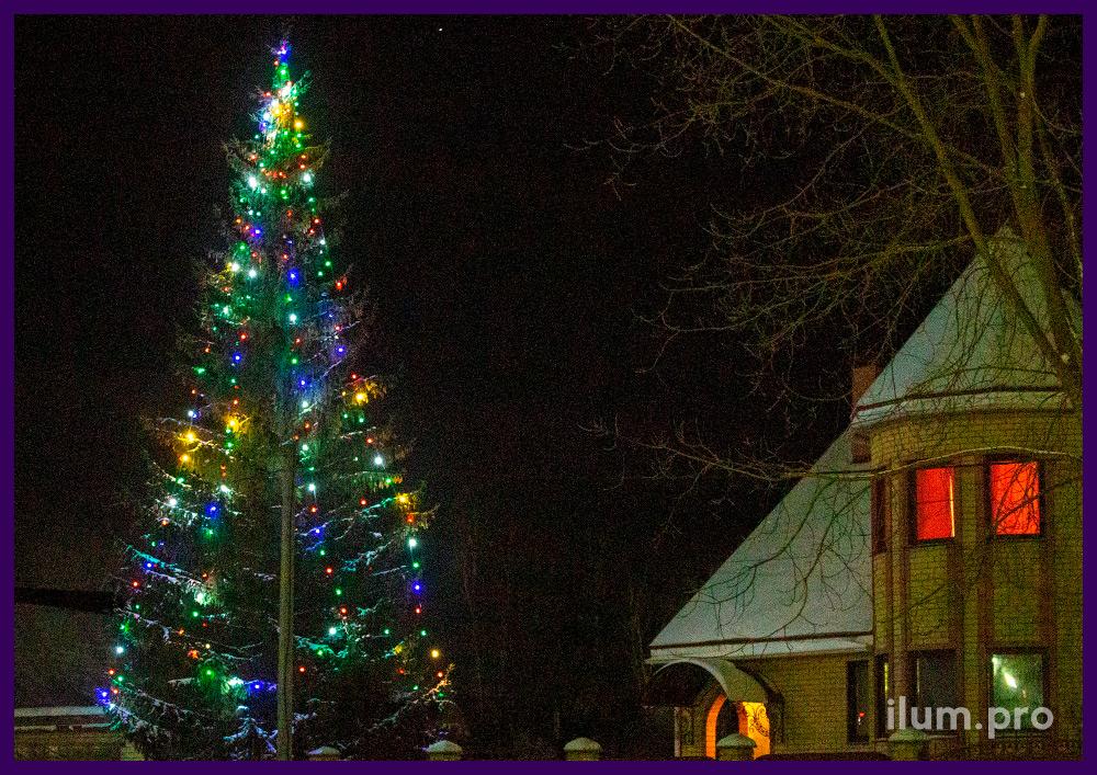Разноцветный светодиодный белтлайт для украшения живых елей на новогодние праздники в Гусь-Хрустальном