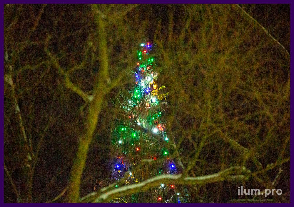 Новогодняя иллюминация для украшения уличной ёлки с разноцветными лампочками во Владимирской области