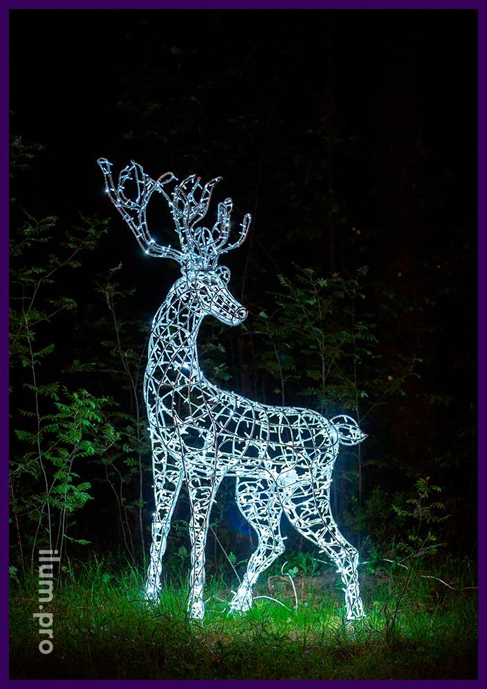 Светодиодный олень - самец с рогами, металлический каркас и подсветка гирляндами