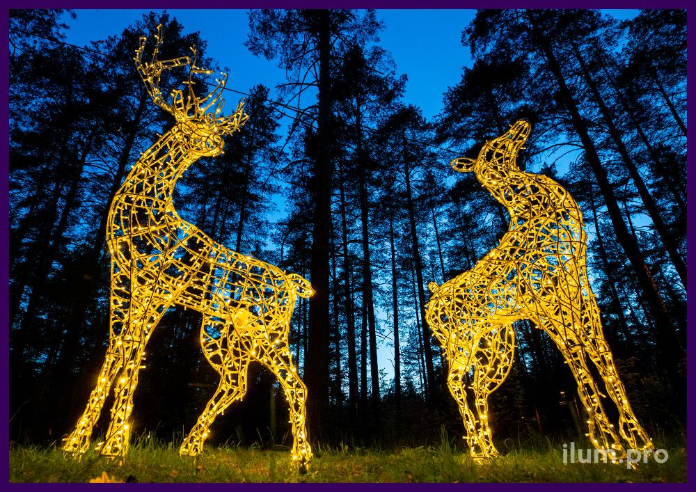 Световые фигуры оленей, пара из металлического каркаса и тёплой иллюминации