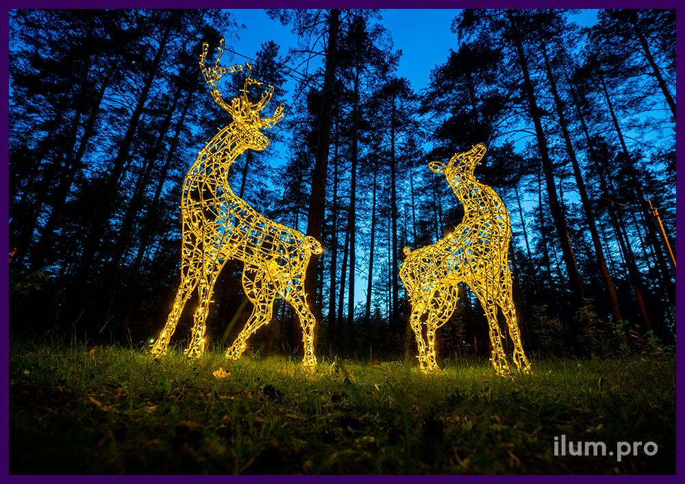 Светящиеся олени с гирляндами тёпло-белого цвета, объёмные металлические каркасы