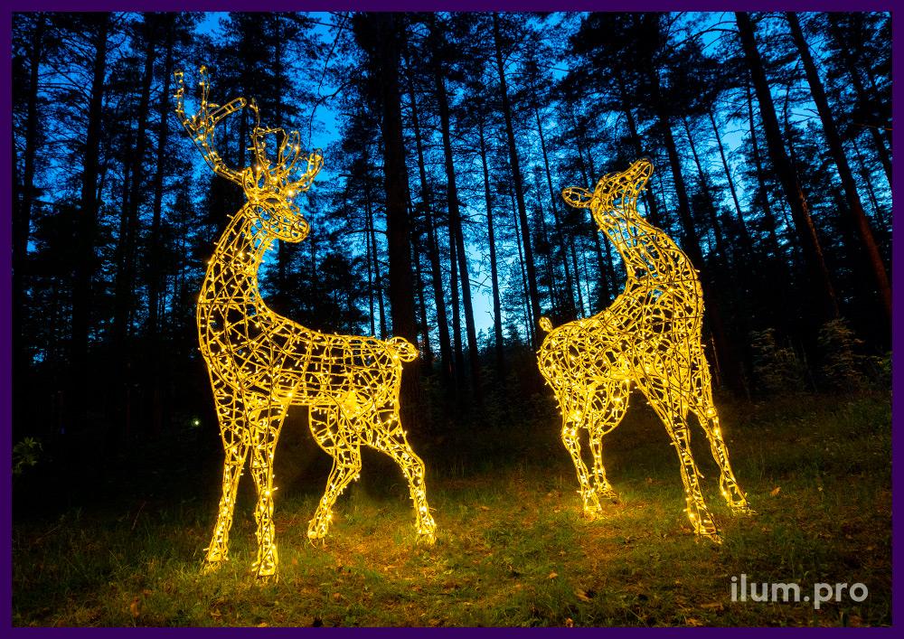 Объёмные световые фигуры оленей из металла и светодиодных гирлянд с защитой от осадков